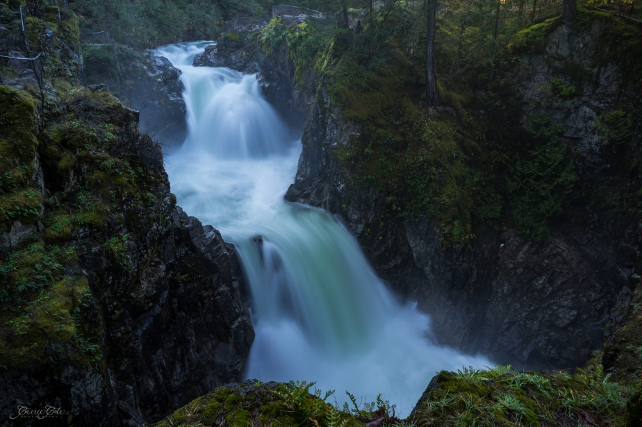 We made a quick stop at Little Qualicum Falls Provincial Park near Parksville, BC. With all the rain we've had lately, the water is really raging through the canyon. It was difficult keeping my lens clear at this misty falls!