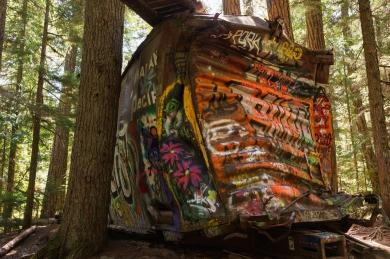 Train Wreck Trail near Whistler, British Columbia.